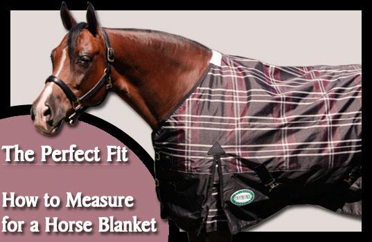 blanketfitting
