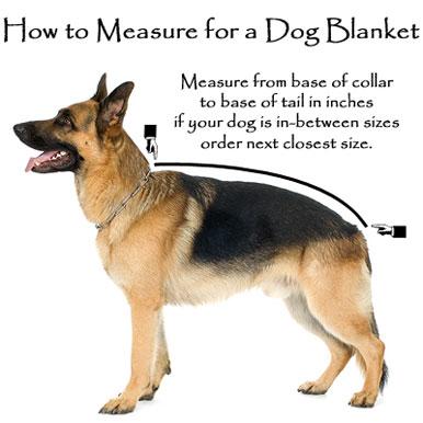 dogmeasure