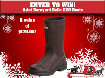 Enter to Win - Ladies Ariat Barnyard Belle H20 Boots! - Big Dee's ...