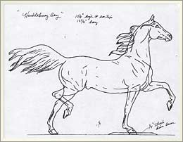 Sketch from Breyerhorse.com on the creation of a Breyer Horse