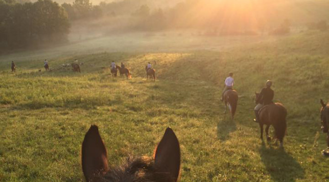Early morning view of foxhunting