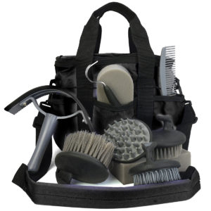10 piece grooming kit