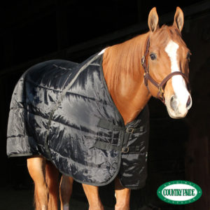 Shop Stable Blankets to keep your horse warm in the winter
