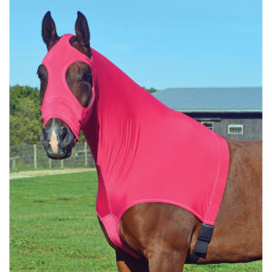 Lycra Hoods - Keep your horse clean!
