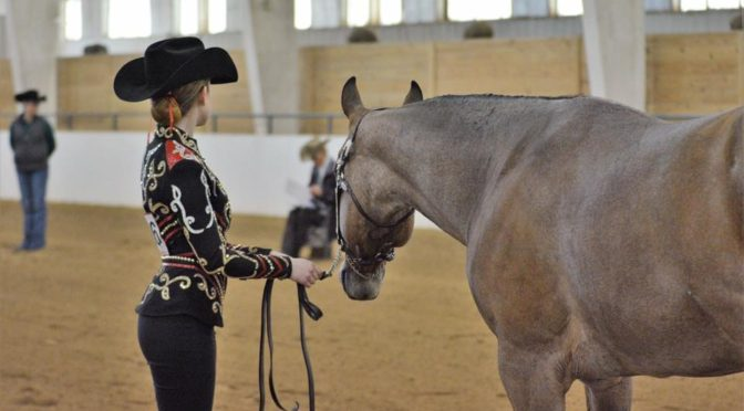 Are you and your horse show ring ready?