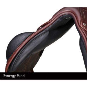 Synergy Panel on the Bates Advanta