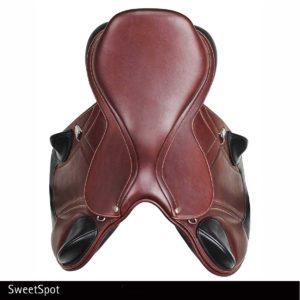 "The Advanta Saddle ""Sweet Spot"""