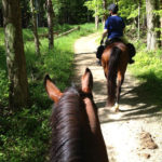 trail riding on bridle path